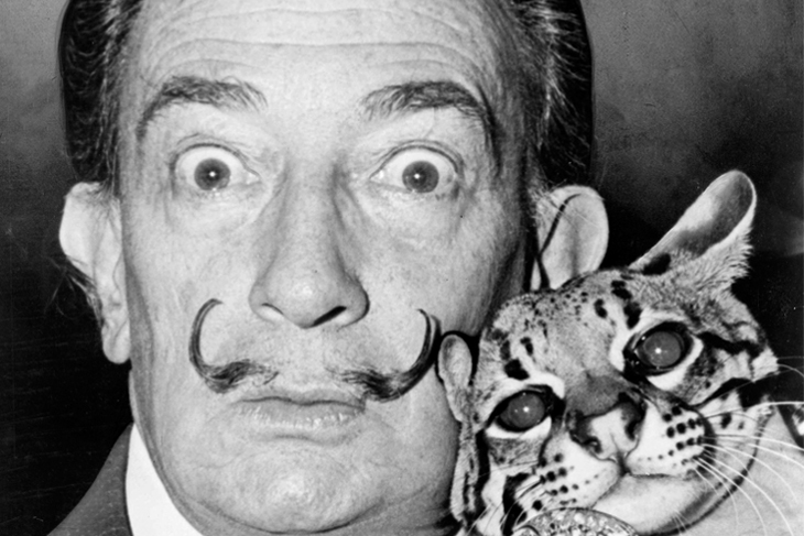 Salvador Dali with Babou, the ocelot and cane. Roger Higgins photographer. 1965