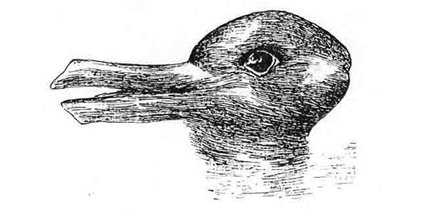 What do you see? A duck or a rabbit? Wikimedia Commons