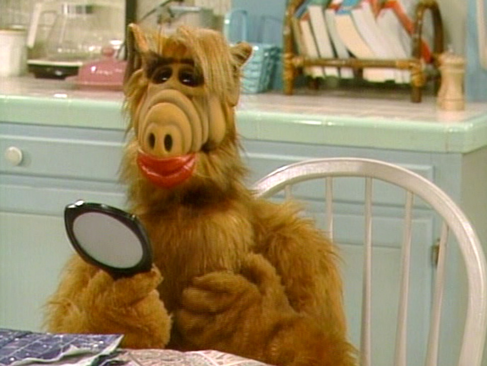 ALF, TV Series 1986–1990