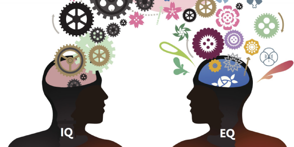 http://www.accionpreferente.com/estrategia/por-que-necesitas-inteligencia-emocional-para-ser-exitoso/